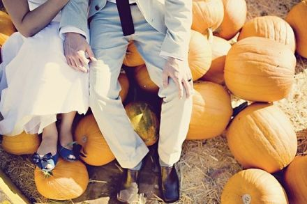 fall wedding pumpkin patch