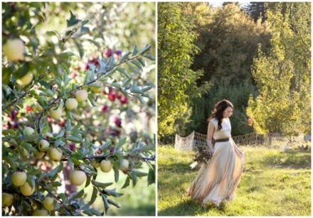 Apple Orchard Wedding 9